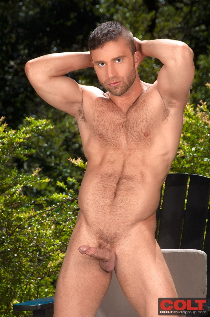 gay young and hairy