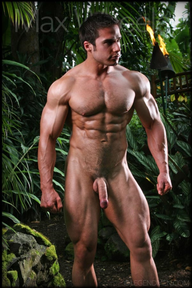 Muscle Men Gay Porn max wheeler | gay porn star pics | nude muscle bodybuilder