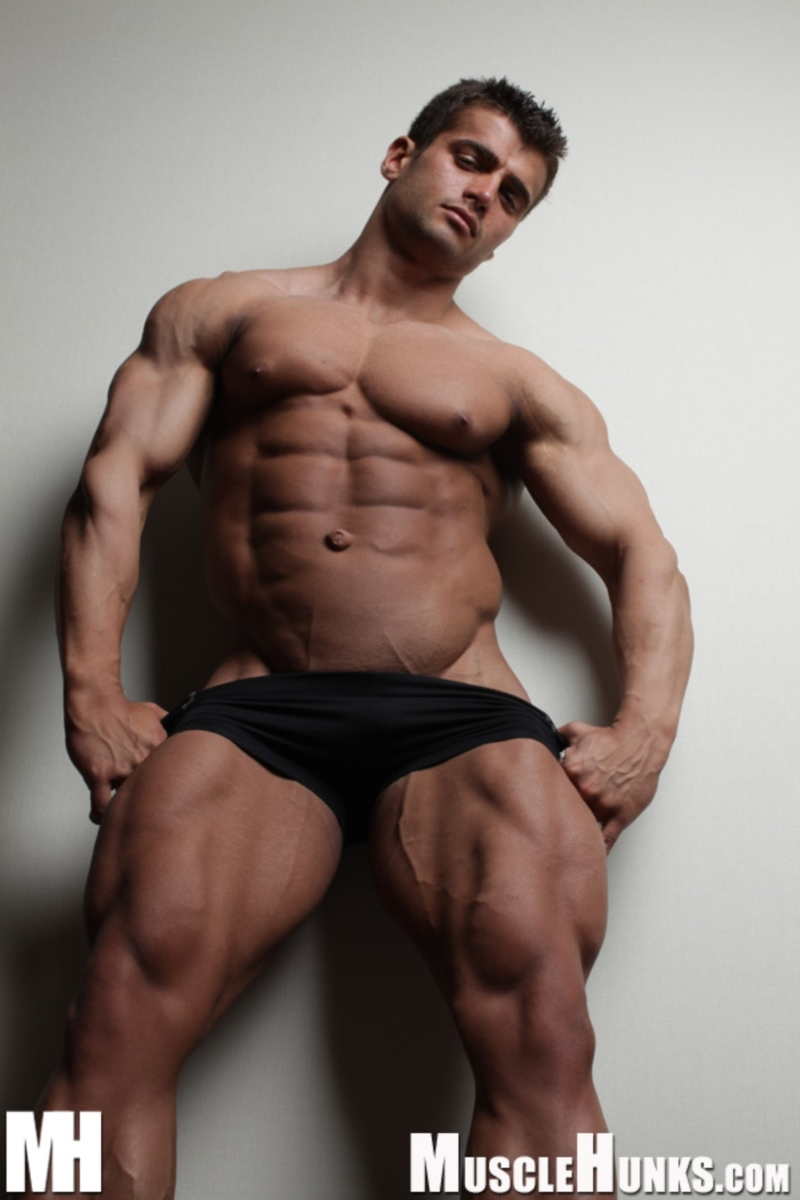 gay muscle photo galleries