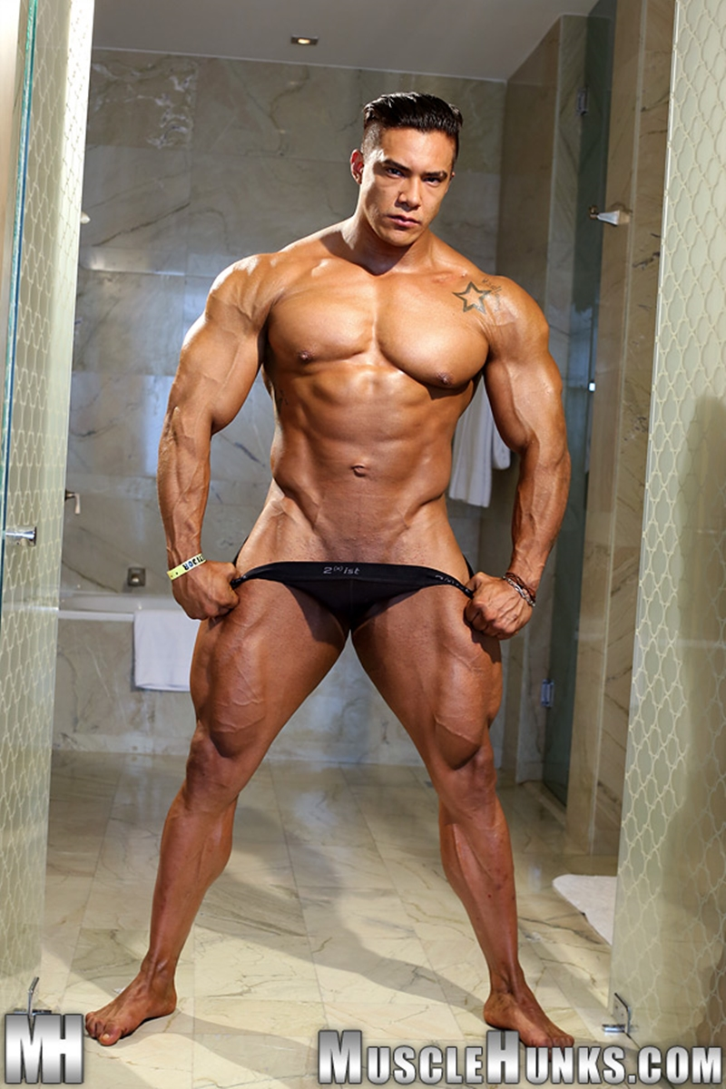 Wade Trent  Gay Porn Star Pics  Naked Muscle Hunk -6931