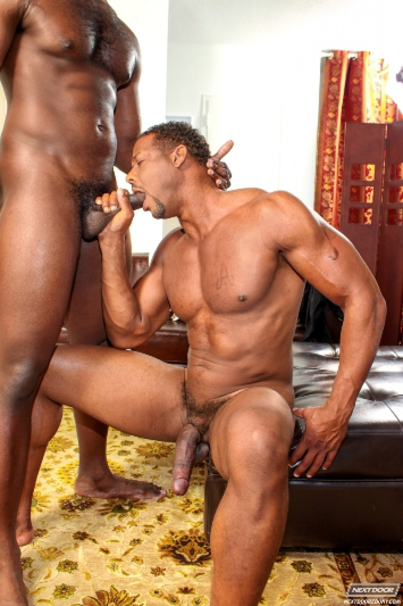 Aron Ridge And Nubius  Black Cock  Gay Porn Pics  Dirty -2272