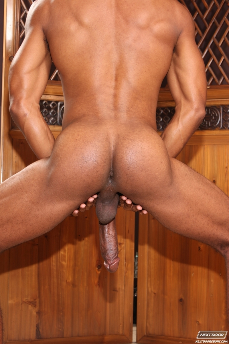 Sean Xavier  Gay Porn Star Pics  Huge Black Dick  Dirty -3969