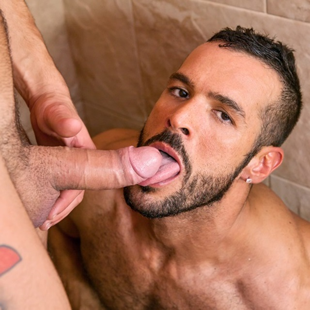 Gay male cock sucking, sexy women bathroom sex
